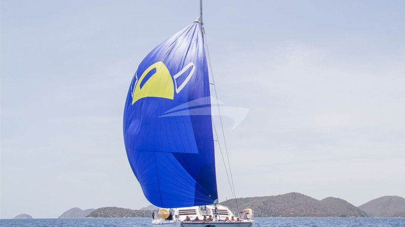 The Viking Spinnaker! - VIKING DREAM Yacht Charter