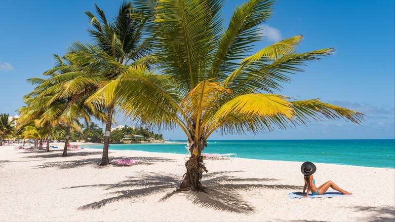 Woman sunbathing relaxing tanning under palm tree on sand on Dover beach