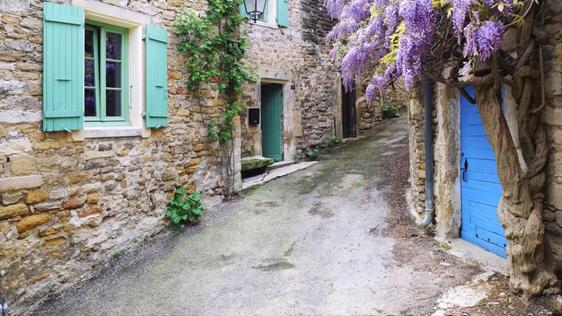Village of Provence flowering purple wisteria vine